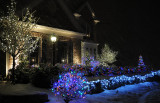 Outside lights_11.jpg
