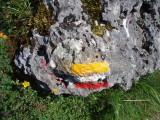 Trail mark on boulder