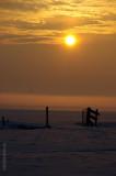 20100107_snow7.jpg