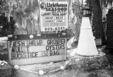 Lighthouse Seafood