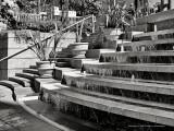 Harbor Steps