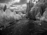 Middle Fork Nooksack River (rework)
