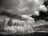 Skagit River Elementals III