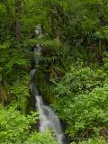 Waterfalls and falls again