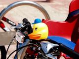 duck bike2.JPG