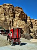 horse cart2.JPG