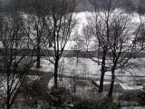 prospectpark snow1.JPG