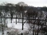 prospectpark snow2.JPG