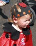 ladybug boy2.JPG