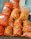carrots ora2.JPG