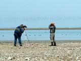 Dave and Gerald watching shorebirds at Beaverhill Lake