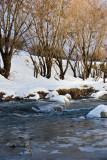 Karaj River Side