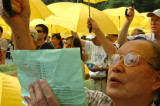 Participant, 2012 Universal Suffrage Rally, 2007