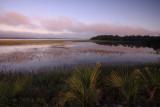 Autumn-Marsh-at-Dawn