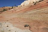 Sandstone bed