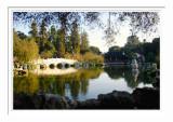 Bridge At Chinese Garden