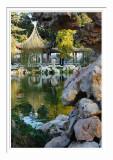 Chinese Garden Pond 4
