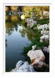 Chinese Garden Pond 5
