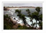 Bondi Beach 5
