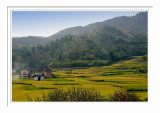 Yongding Country Scene 1