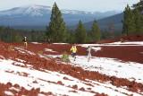 First Runners