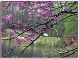 05 APR 08 COLONIAL PARKWAY