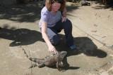 Iguana Farm - Roatan, Honduras