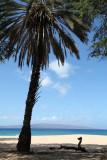 Maui 2010_03012010_046.jpg