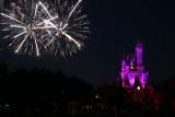 Fireworks at theMagic Kingdom