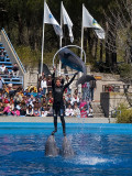 Show en el Zoo-Aquarium de Madrid