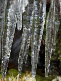 Hielo / Ice