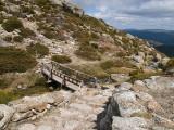 Puente en la montaña / Bridge in the mountain