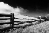 Fenced Meadow.jpg