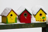 Birdhouses in Snow.jpg