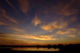 Sunset at St. Marks Wildlife Refuge.jpg