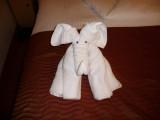 Day 2 Towel Art