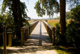 Boardwalk out to the marshes