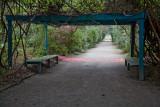 Shady canopy