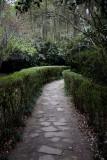 Hedged pathway