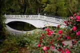 Beautiful garden bridge