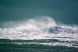 New Zealand Waves & Coastline