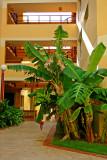 Hotel Albatroz 34.jpg
