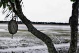 Laguna Limon-Nisibon 24.jpg