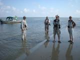 Trinity Island Bird Survey, May 19, 2010