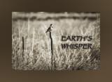 Earth's Whisper
