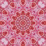 Rose 1glow.jpg