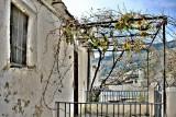 Capileria-26-6688.jpg