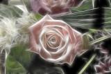 rosey posey