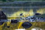 Magic light on Porter Pond
