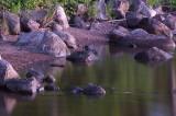 Vatten5.jpg